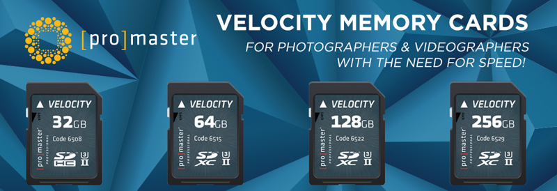 velocity memory cards feature shot